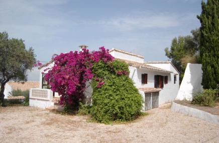 Villa in Orba for sale